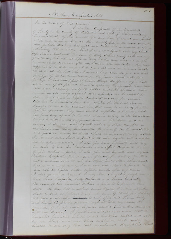 Delaware County Ohio Will Records Vol. 1 1812-1835 (p. 175)