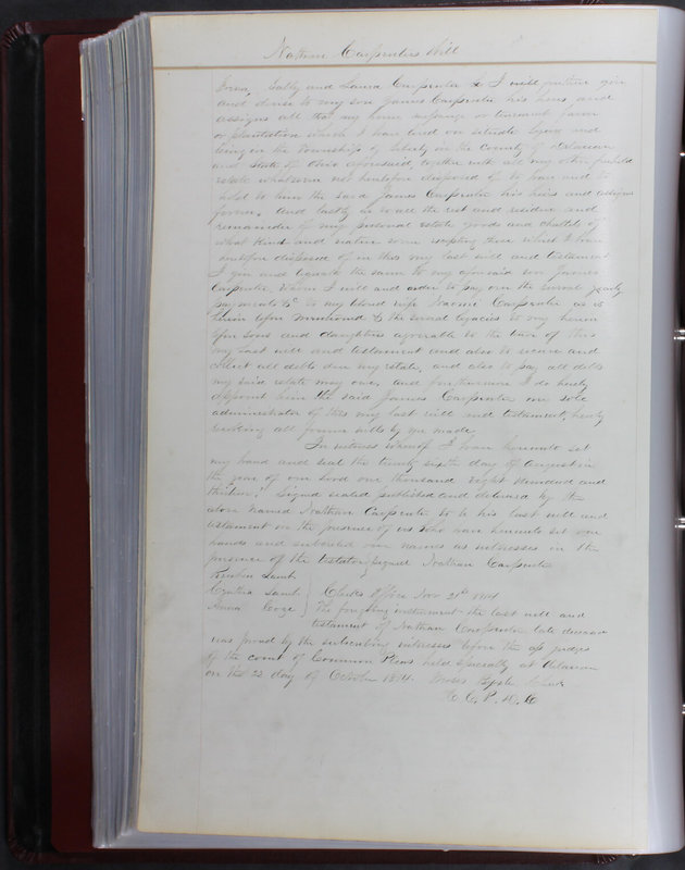 Delaware County Ohio Will Records Vol. 1 1812-1835 (p. 176)