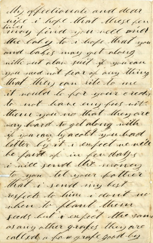 Mitchell Family Civil War Letters (p. 11)