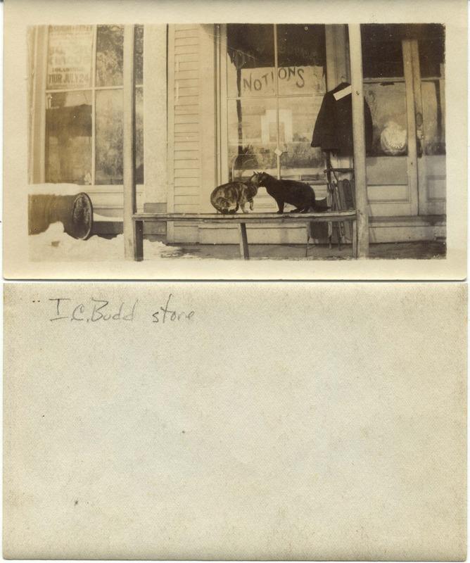 John Bricker Sr.'s Postcard Collection (p. 100)