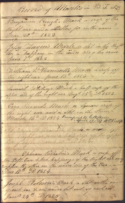 Record Book of Berkshire Township No. 2 1807-1843 (p. 9)